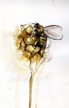"""somecallmerae: """"bee and honeycomb"""" watercolor, micron, sharpie, and pencil Rae"""