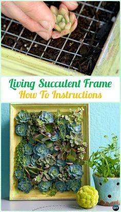 DIY Living Succulent Picture Frame Garden Instruction- DIY Indoor #Succulent #Garden Ideas Projects