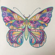 Take a peek at this great artwork on Johanna Basford's Colouring Gallery! Butterfly Coloring Page, Butterfly Drawing, Butterfly Painting, Butterfly Wallpaper, Butterfly Flowers, Butterfly Wings, Beautiful Butterflies, Coloring Book Art, Coloring Pages
