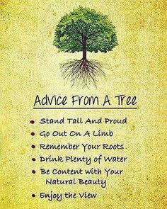 Learn character from trees values from roots and change from leaves. Tasneem Hameed Just a little something to think about the next time you do tree pose Tree Quotes, Learn Hebrew, Hypnotherapy, Thats The Way, Quotes About Moving On, Belleza Natural, Stand Tall, Inspirational Thoughts, Thoughts