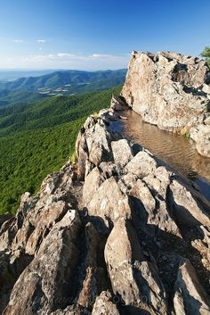 Little Stony Man Cliffs - Shenandoah National Park, Virginia by t. National Park Tours, Shenandoah National Park, Us National Parks, Stony, Round Trip, Nice View, East Coast, Virginia, Places To Visit