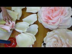 Роза Часть 2 - YouTube