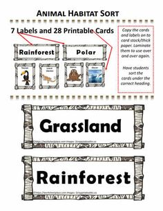 Free cards and labels to do at centers for an animal habitat sorting activity. Printable Cards, Printables, Animal Classification, Free Cards, Animal Habitats, Sorting Activities, Animal Cards, Kids Learning, Web Design