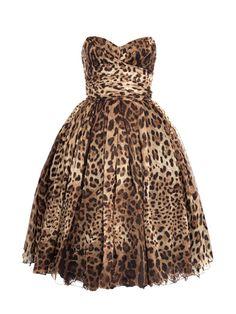 Cheetah =)