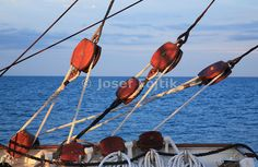 Four masted barque Sedov, Tall ship race 2007, Aarhus - Kotka, Baltic Sea