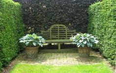 *hostas again with classic Lutyens bench