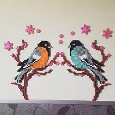 Birds perler beads by sohee5888