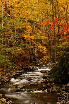 Middle Prong in Autumn   Flickr - Photo Sharing!
