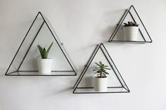 The Euclid Triangle Wall Display can be used as a simple Triangular wall decoration or as a display case for potted plants + cacti, notebooks or jewellery. Measurements - inches Handmade in London by Monti. Plants not included. Display Shelves, Wall Shelves, Display Cases, Glass Showcase, Triangle Wall, Lokal, Room Inspiration, Wall Mount, Interior Decorating