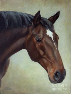 Horse Art Print featuring the painting Thoroughbred Horse, Brown Bay Head Portrait by Amy Reges