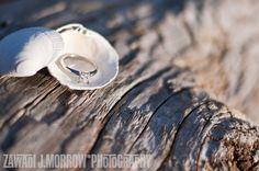 Beach engagement photo. Ring in shell. Zawadi J. Morrow Photography www.ezmorrow.com