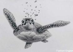 Drawn sea turtle pencil 20 1024 x 736 dumielauxepices net cute animal cartoon hand drawn style Sea Tattoo, Ocean Tattoos, Body Art Tattoos, Small Tattoos, Sleeve Tattoos, Sea Turtle Tattoos, Cute Turtle Tattoo, Hawaiian Turtle Tattoos, Sea Life Tattoos