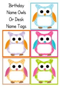 Colorful Owls Birthday Bulletin Board Set | Classroom décor from ...