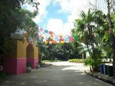 Tequila museum, Chankanaab