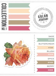 Color Muse. Collection No. 1. Color schemes you'll love!