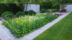 Nowoczesne ogrody - roślinność
