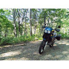 【noxtxrpdba】さんのInstagramをピンしています。 《#xtz660 #tenere660 #バイク #ツーリング #山 #森》