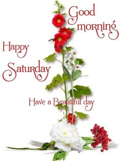Good Morning Happy Saturday, Good Morning Roses, Sunday, Morning Images, Morning Quotes, Have A Beautiful Day, Blessings, Posts, Flowers