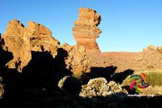 ROQUE CINCHADO Y RETAMAS BLANCAS #trekking #teide #tenerife #hiking #landscape
