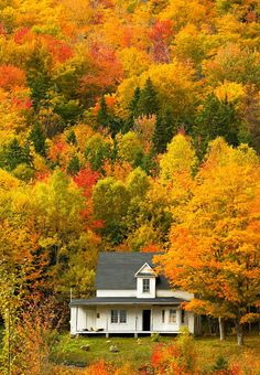 The amazing fall colors of Cape Breton Island Nova Scotia