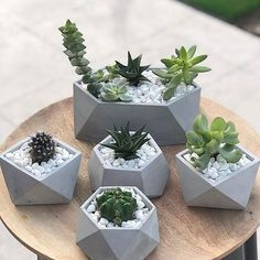 Concrete geometric planters😍 Leave your thoughts on these planters in the Comments and Tag a friend👇💚 ➖➖➖➖➖➖➖➖➖➖ 📷 Concrete Plant Pots, Concrete Crafts, Concrete Design, Concrete Planters, Succulent Pots, Succulents Diy, Cactus Decor, Cactus Art, Cactus Painting