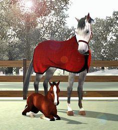 Sims 4 Horses | Stallions-
