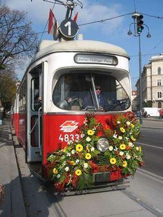 Visit Austria, U Bahn, Central Europe, Second World, Great Pictures, Rotterdam, Alps, Vienna, Travel Destinations