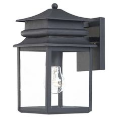 Outdoor Wall Light with Clear Glass in Black Finish at Destination Lighting
