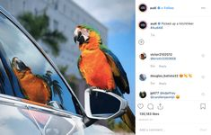 How To Boost Your Instagram: 10 Most Useful Tips From Top Brands Instagram Bio, Instagram Accounts, Bike Components, Business Performance, Social Proof, Instagram Giveaway, Do You Know What, Creating A Brand