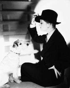The Thin Man's Asta with Myrna Loy