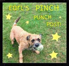 Earl's World!: The Pinch Punch Post! - November 2013