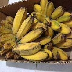 Your Voices We Raise. Lets Go Viral! Post Comments on Revolutionized Online Community Banana Health Benefits, Banana Contains, Bacolod City, Your Voice, How To Make Shorts, Eat