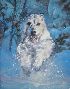 Irish Wolfhound dog art canvas print of LA Shepard by TheDogLover, $39.99