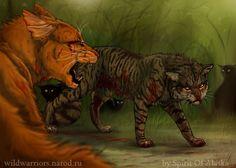 Tigerclaw's Fury. Tiger vs Fire