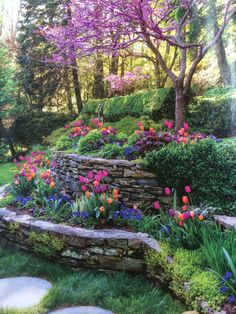 Awesome Tips: Cottage Backyard Garden Landscaping backyard garden lights paths.Country Garden Ideas Veggies garden ideas for beginners solar lights. Terraced Landscaping, Front Yard Landscaping, Terraced Backyard, Landscaping Ideas, Garden Oasis, Terrace Garden, Hillside Terrace, Garden Kids, Iron Garden Gates