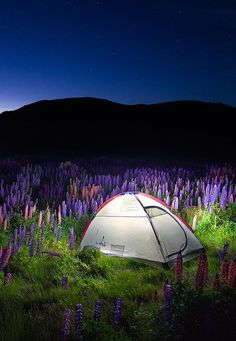 """The Tent"" - Mount John, South Island, New Zealand"