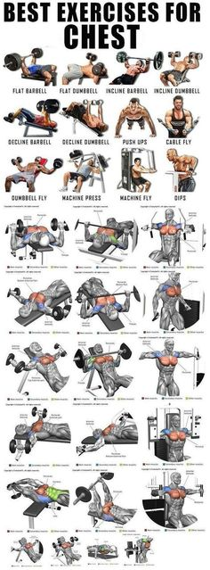 Best chest workout for bigger and stronger chest Best chest workout for bigger and stronger chest Chest Workout For Men, Chest Workout Routine, Abs Workout Routines, Chest Workouts, Dumbbell Workout, Workout Challenge, Chest Exercises, Bicep Workouts For Men, Exercise For Chest