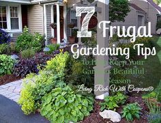 Frugal Gardening Tips: How to Keep Your Garden Beautiful On A Budget | Living Rich With Coupons®Living Rich With Coupons®