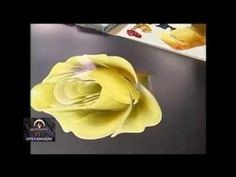 LUZ ANGELA - yellow rose - YouTube