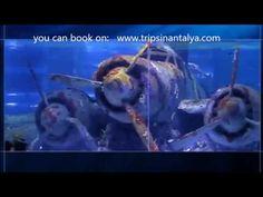 antalya aquarium (www.tripsinantalya.com)
