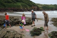 """July 29: """"Rockpooling is a real-life treasure hunt – but it is also seriously good wildlife-watching. At low tides, the saltwater forsakes nooks, crannies and ledges, rendering accessible creatures that would otherwise be both out of your reach and your element."""" A Summer of British Wildlife; www.bradtguides.com"""