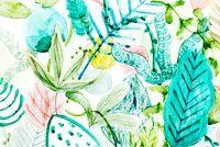 CACTUS KOALAS - Amy Borrell | Illustration & Design