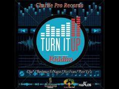 Turn It Up Riddim (Charlie Pro Records)(Full Promo Nov 2014) mix by dj O...