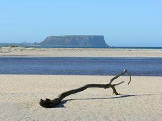 Little Island, Brother, Australia, River, Heart, Photos, Black, Tasmania, Black People