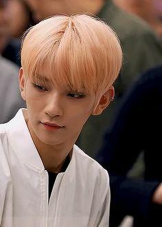 my sun, my stars, my moon, and my sky. i gif. Joshua Hong, Joshua 1, Joshua Seventeen, Hong Jisoo, Favorite Person, K Idols, Kpop, Jun, Archive