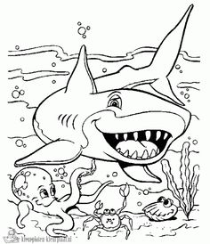 kleurplaat haai - Google zoeken