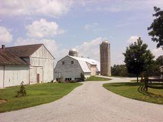 Mt. Pleasant Road - Strasburg, PA - Southern Lancaster County - July, 2010