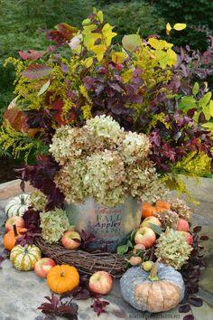 Autumn Harvest Arrangement with flowers, foliage, pumpkins and apples | homeiswheretheboatis.net #fall #hydrangeas #DIY #flowers