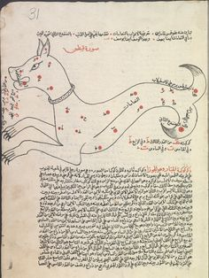 [Ṣuwar al-kawākib] [صور الكواكب] Creator: Ṣūfī, ʻAbd al-Raḥmān ibn ʻUmar, 903-986 صوفي، عبد الرحمن بن عمر Origin: [1607] According to the colophon, copied on 4 Ramaḍān 1015 (fol. 40b). Reading statement in the name of Ibrāhīm ibn al-Shaykh Muḥammad, Jumādá al-Ulá 1114 [1702] (fol. 43b).