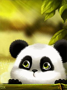 Панда - анимация на телефон №1390621